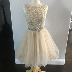 Gorgeous Sequined Tulle Dress